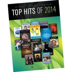 TOP HITS OF 2014 (PVG)