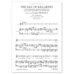 IN MY WILD MOUNTAIN VALLEY THE LILY OF KILLARNEY